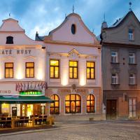 Hotel Concertino Zlatá Husa, hotel v Jindřichově Hradci