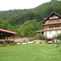 Casa din Salcami, hotel in Polovragi
