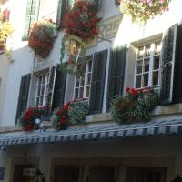 Hotel zum alten Schweizer, отель в городе Тванн