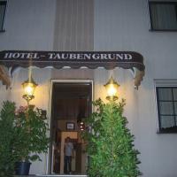 Airport-Hotel zum Taubengrund, hotel in Kelsterbach