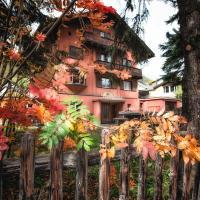 Chalet Speciale - Celerina, hotel in Celerina