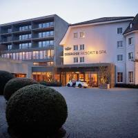 Seerose Resort & Spa, отель в городе Meisterschwanden