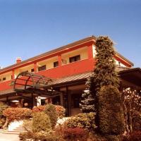 Hotel Cinzia Ristorante, hotel in Vercelli