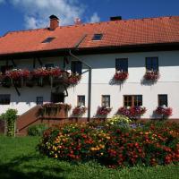 Bauerborchardt - Urlaub am Bauernhof bei Familie Borchardt, Hotel in Wernberg