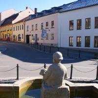 Penzion U Pasacka, hôtel à Nové Město na Moravě
