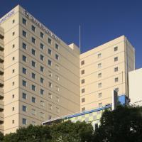 Daiwa Roynet Hotel Kawasaki, hotel in Kawasaki