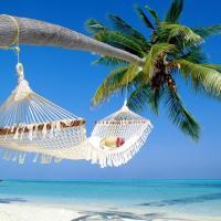 Affordable Beach Condos - Treasure Island Resort