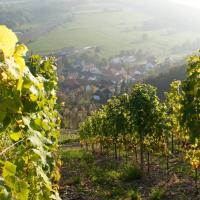 Weingut Hees - Landgasthof Zum Jäger aus Kurpfalz