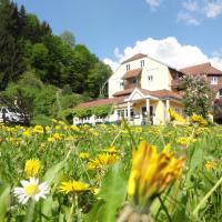 Familiengasthof Maier, hotel in Mautern