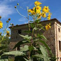 Al Palazzaccio, hôtel à Calci