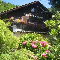 Pension Wolf, Hotel in Steindorf am Ossiacher See