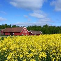 Red Bird Farm, hotell i Ystad