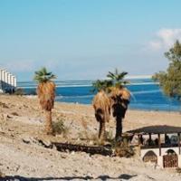 Rose Dead Sea Neve Zohar, hotel in Neve Zohar