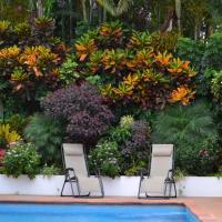 Eden Atenas Costa Rica, отель в Атенасе