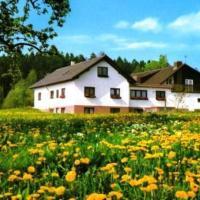 Gasthaus-Pension Zum Brandweiher, hotel in Amorbach