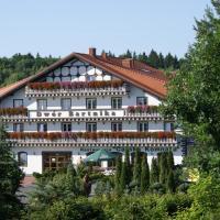Dwór Bartnika – hotel w mieście Narewka