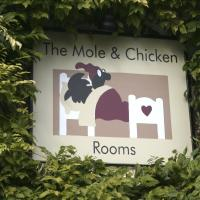 The Mole and Chicken