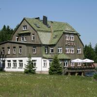 waldhotel AUSZEIT, hotel in Tanne