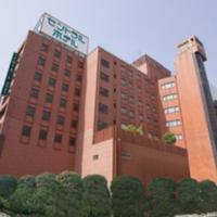 Central Hotel Sasebo, hotel in Sasebo