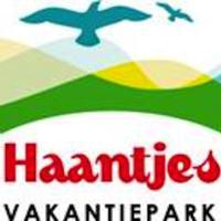 Haantjes Vakantiepark, hotel in Formerum