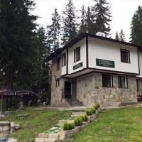 Family Hotel Ginger, hotel in Pamporovo