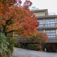 Yunokaze HAZU, отель в городе Shinshiro