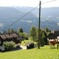 Ferienwohnung Lahnerhof, Hotel in Arriach