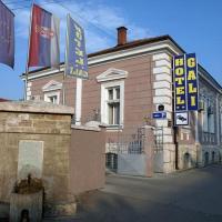 Hotel Gali, отель в городе Пирот