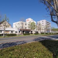 Tsukuba Daily Inn, hotel in Tsukuba