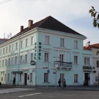 Hotel U Hroznu, hotel v destinaci Mnichovo Hradiště