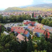 Résidence Les Rives de la Fecht - Colmar Ouest