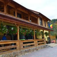Pensiunea Mihaiu Sasului, hotel en Vîrciorog