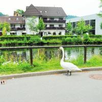 Hotel Schiff Nagold