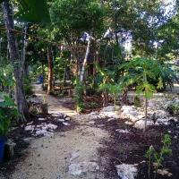Quintana Roo National Park Campground & Hiking, hotel in Francisco Uh May