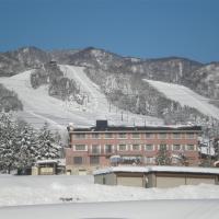 Alpen Plaza, hotel in Iiyama
