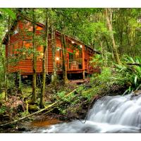 The Mouses House Rainforest Retreat, hotel in Springbrook