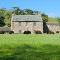 The Dash Farmhouse, hotel in Bassenthwaite