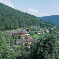 Hotel Waldlust, hotel in Baiersbronn