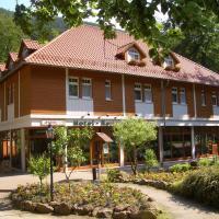Kurpark Flair Hotel Im Ilsetal, hotel in Ilsenburg