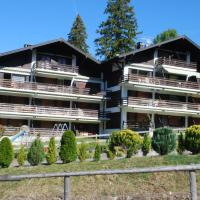 Les Sapins 207e, hotel in Schwarzsee