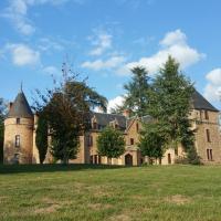 Château de Bussolles & 2 gîtes, hotel in Barrais-Bussolles