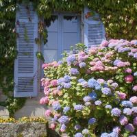 Une Chambre en Bretagne