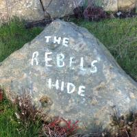 Rebels Hide