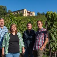Zur Weinlaube, Hotel in Rhodt unter Rietburg