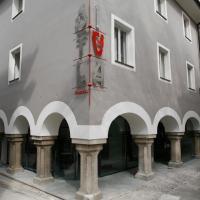 Hostel Situla, hotel in Novo Mesto