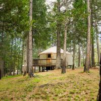 Yosemite Lakes Hillside Yurt 10