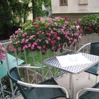 Pension Ani-Falstaff, hotel in 09. Alsergrund, Vienna