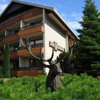 Hotel Zum Goldenen Hirsch, hotel in Bad Bevensen