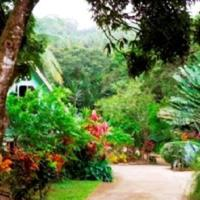 Coffeeriver Cottages, hotel in Marigot