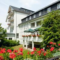 Vitalhotel Weisse Elster, hotel in Bad Elster